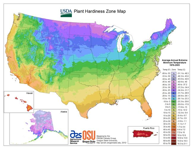 Usda Hardiness Zone Map And Lookup