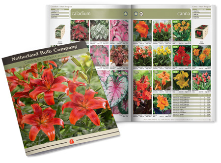 Click for 2019 Spring Garden Center E-Catalog